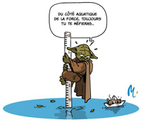 illustration yoda eau gironde
