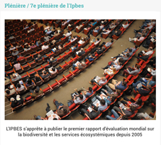 "ipbes 7<sup class=""typo_exposants"">e</sup> session 2019"